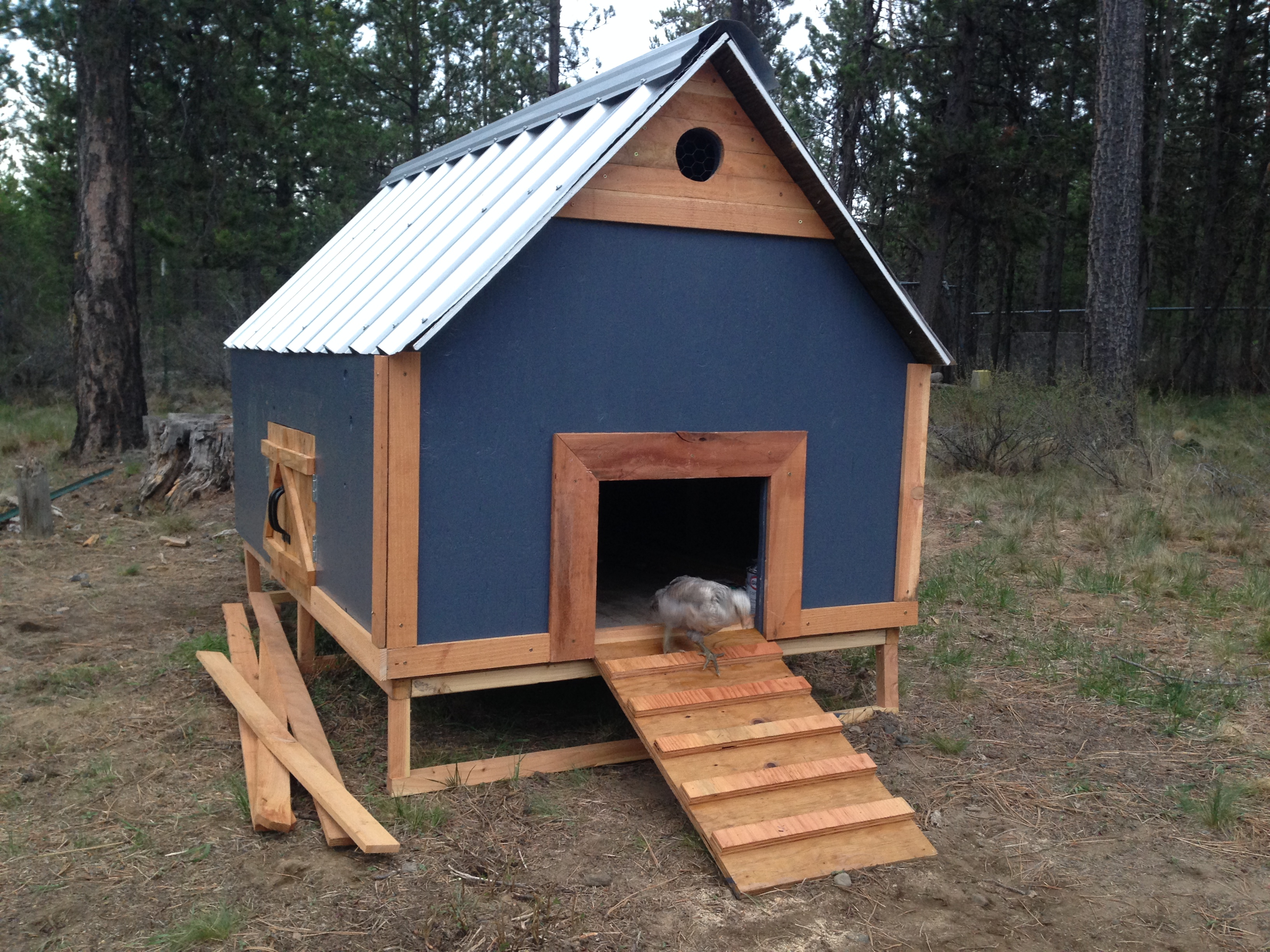 New Chicken Coop made from Pine and Metal roofing.