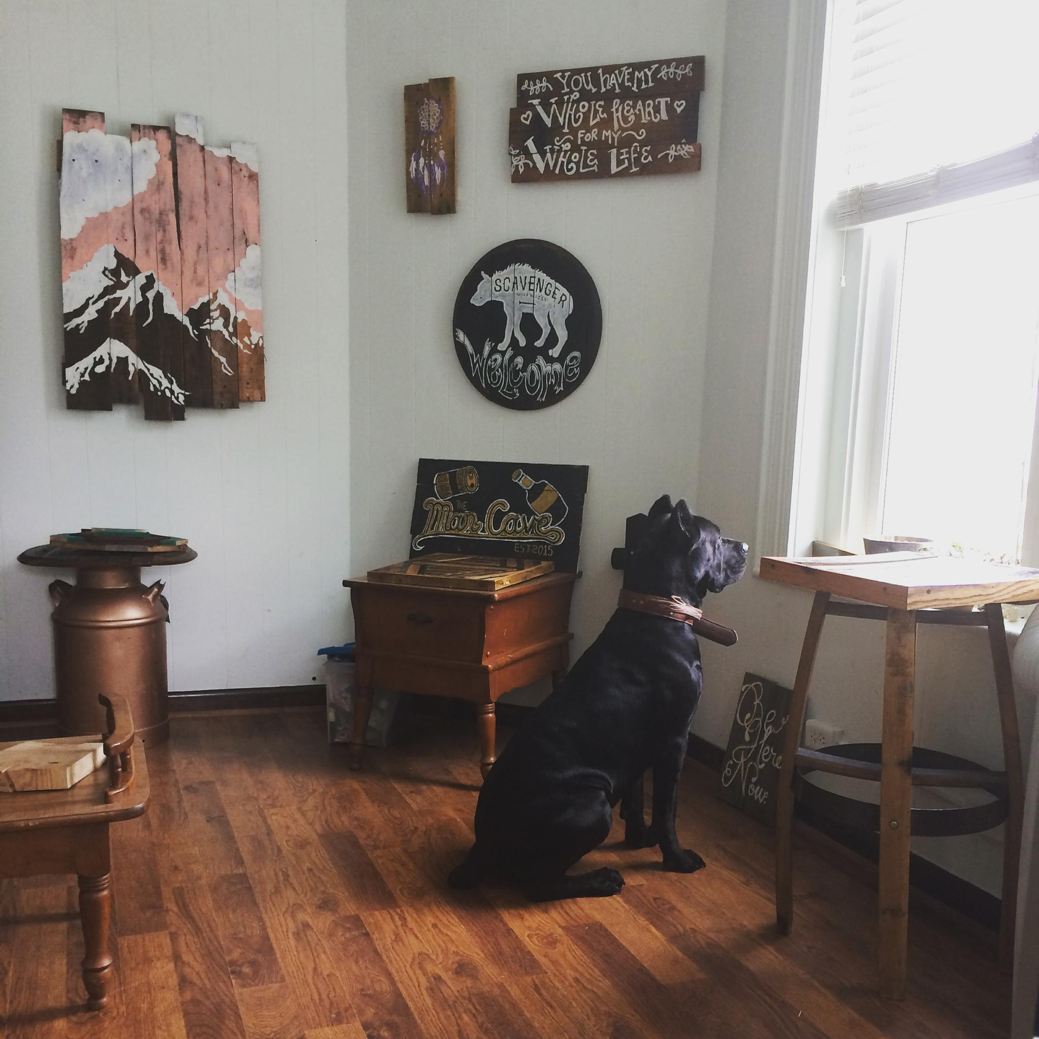 Our cane corso posing with our Reclaimed wood painted signs and furniture in Bend, Oregon